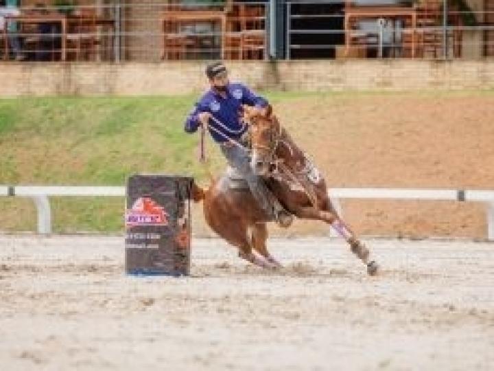 Halter e Três Tambores são os temas da 19ª edição do Programa do Cavalo Árabe