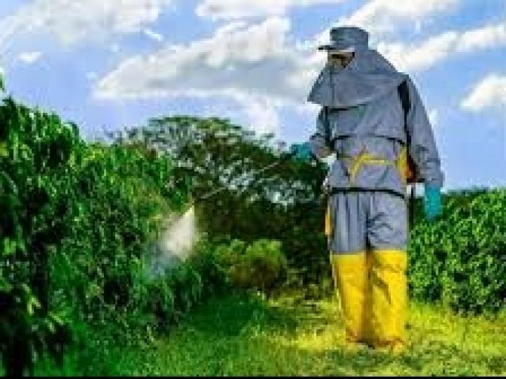 Países reavaliam norma da ISO para vestimentas protetivas agrícolas