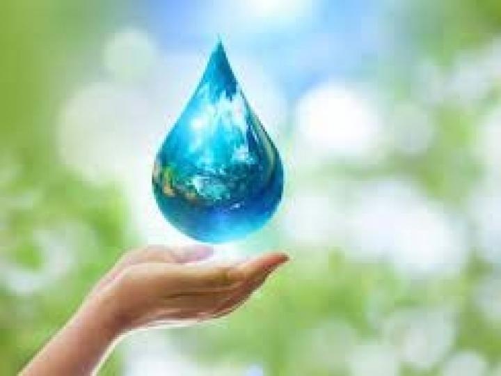 Terminais de açúcar economizam mais de 900 mil litros de água usando simples ideias