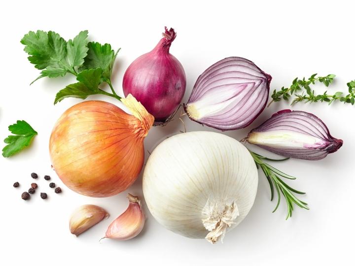 Quais os principais desafios da nutrição e do manejo na cultura da cebola?