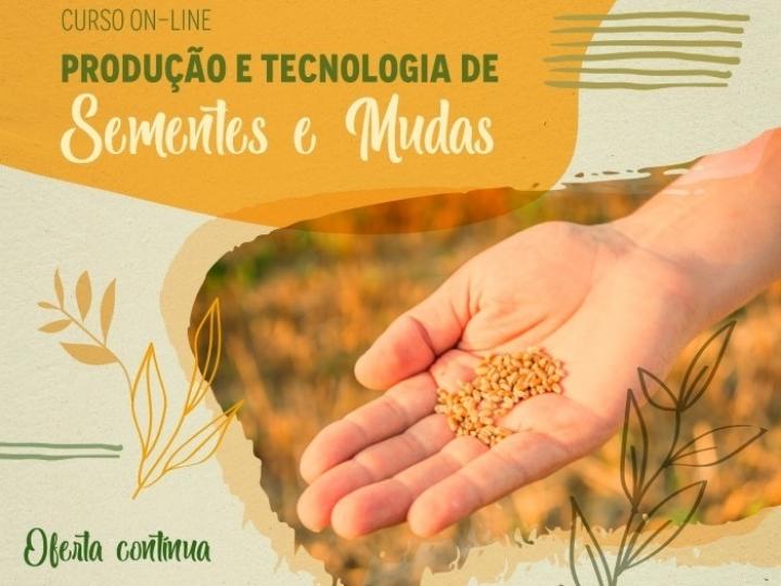 Embrapa lança curso on-line de produção e tecnologia de sementes e mudas