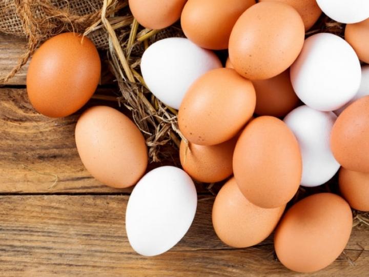 Exportações de ovos mantém alta de 142,5% no 1°Tri