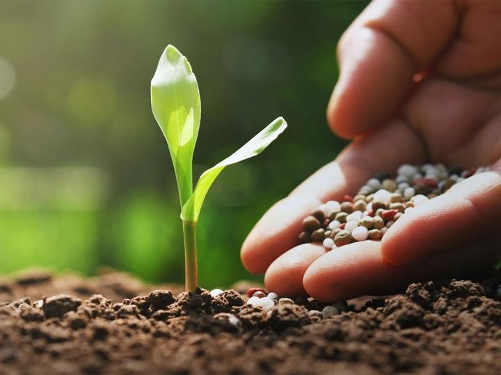 Aumento da demanda por fertilizantes acompanha a alta produção de alimentos no Brasil