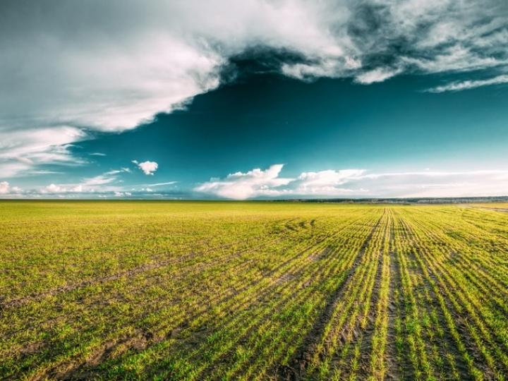 Aplicação do crédito rural atinge quase R$ 234 bilhões em 11 meses do Plano Safra