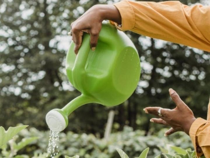 Câmara aprova projeto de socorro a agricultores familiares