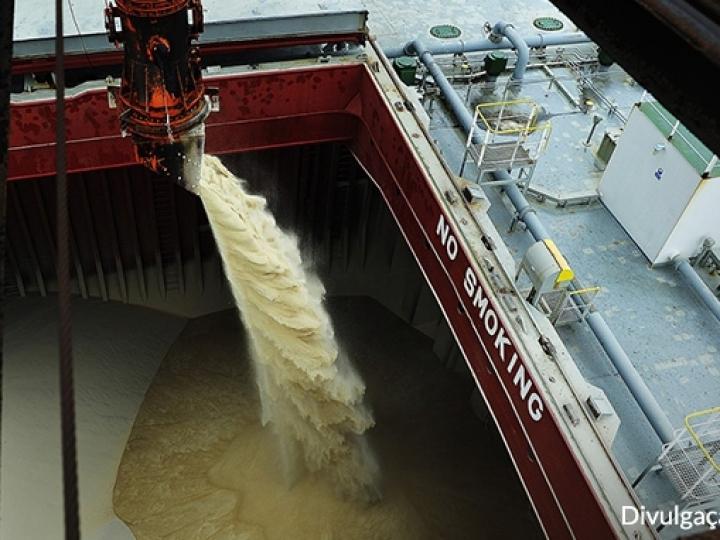 Brasil exporta mais de 400 mil t de açúcares e melaços na 1ª semana de junho