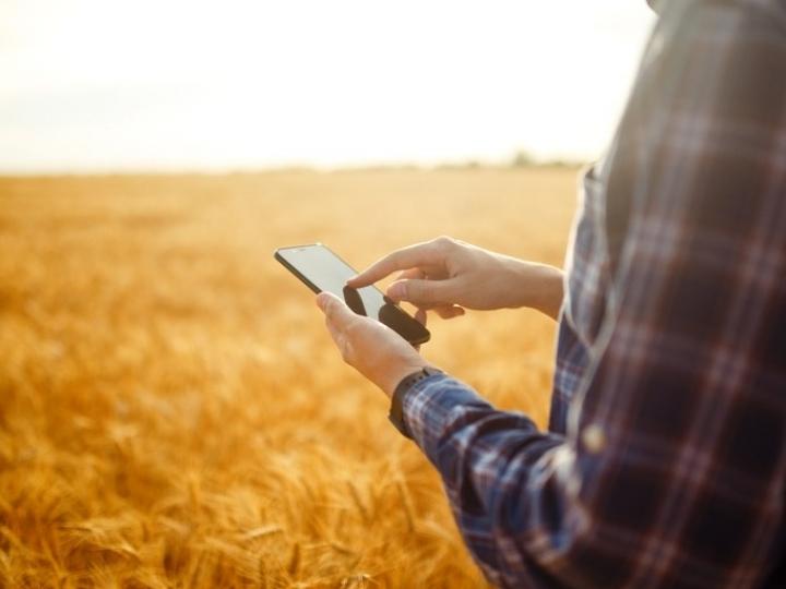 Conectividade é desafio gigantesco para o agro, afirma presidente da Embrapa