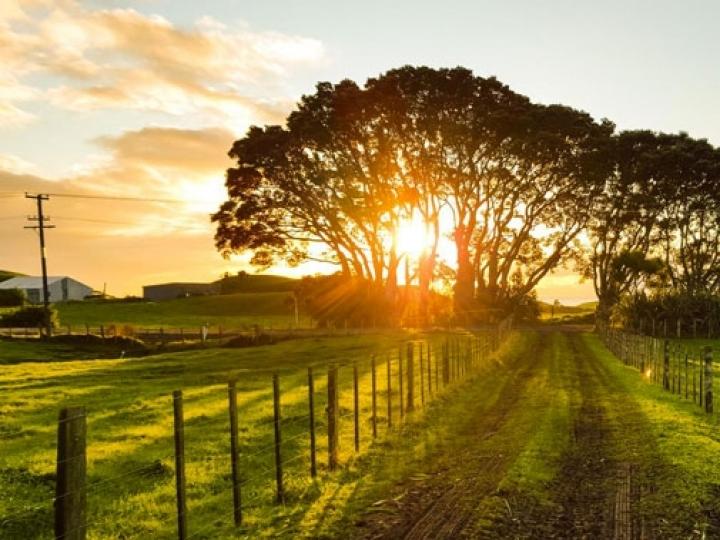 CNA debate juros compensatórios em desapropriação de imóveis rurais
