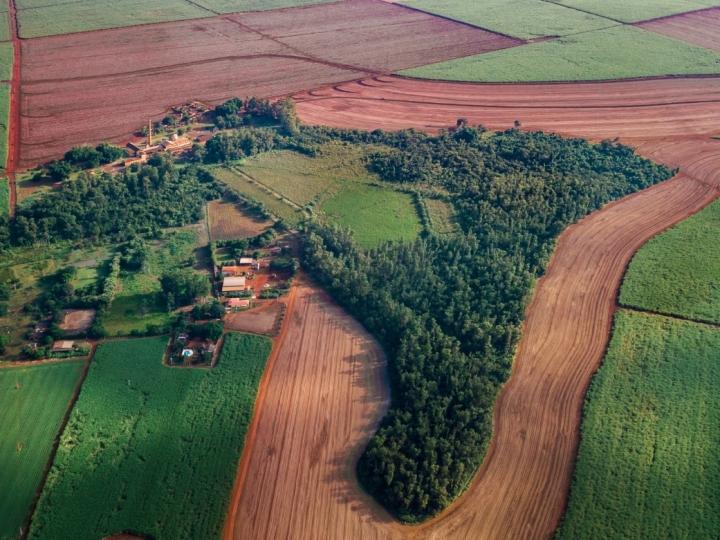 Museu da Cana realiza programa educativo de preservação do patrimônio ambiental