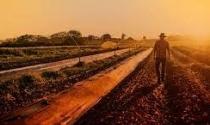 Chanceler brasileiro condena barreiras comerciais e destaca a força do agro
