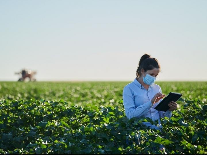 Jacto anuncia nova área com soluções para a Agricultura 4.0