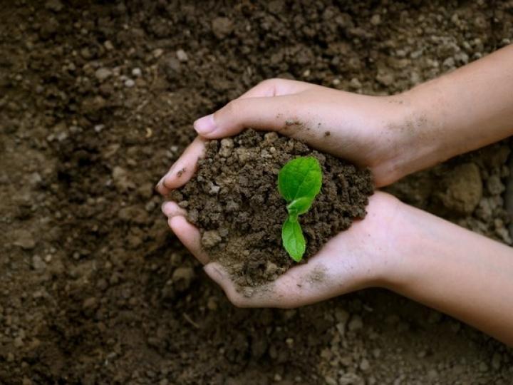 Estudo da Conab indica recorde de importação de fertilizantes