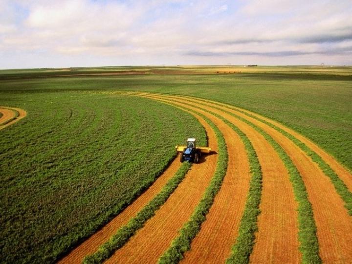 Agroindústria lança manifesto em defesa da democracia e critica instabilidade