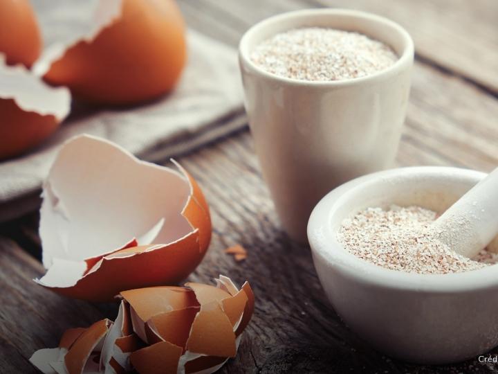 Conheça os benefícios da casca do ovo