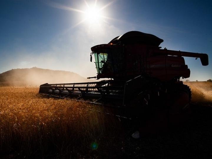 Projeções agropecuárias da China para os próximos 10 anos