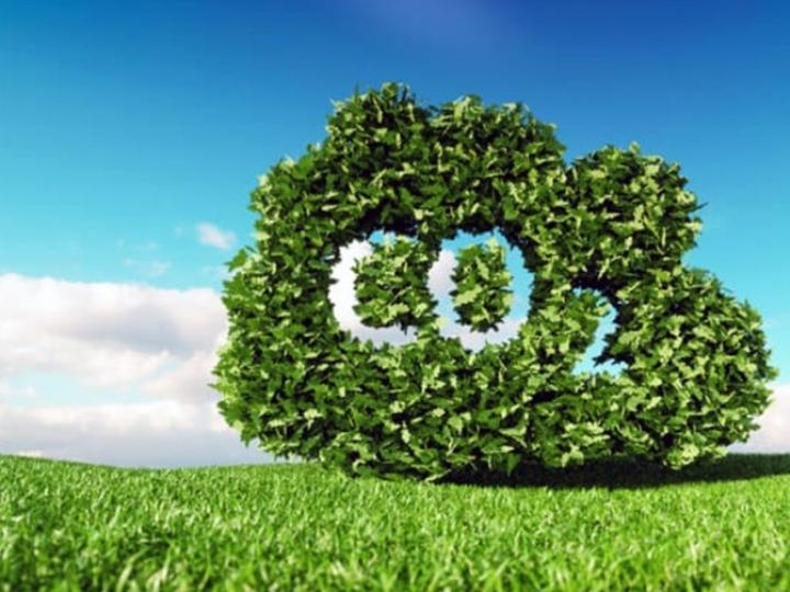 Logitech assume compromisso de remover mais carbono do que cria no meio ambiente