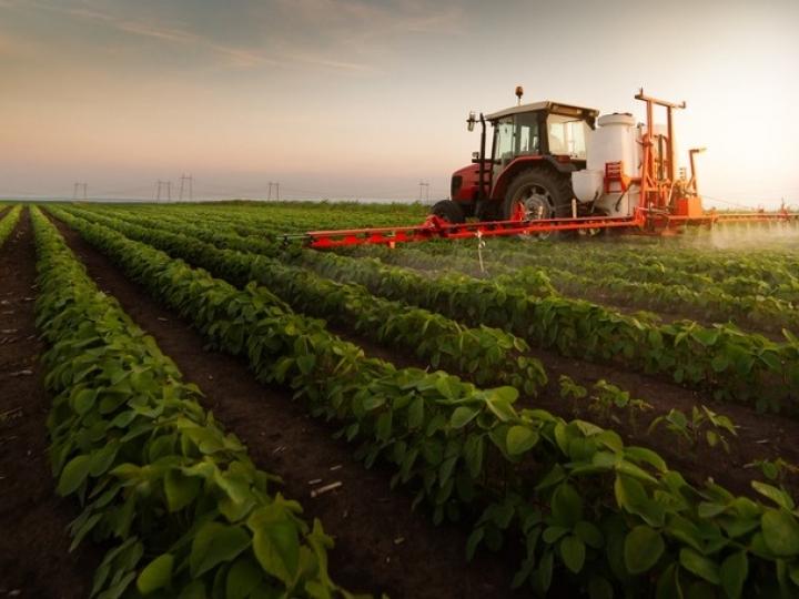 CARF: gastos com arrendamento agrícola vinculados à atividade econômica geram créditos de PIS e Cofins