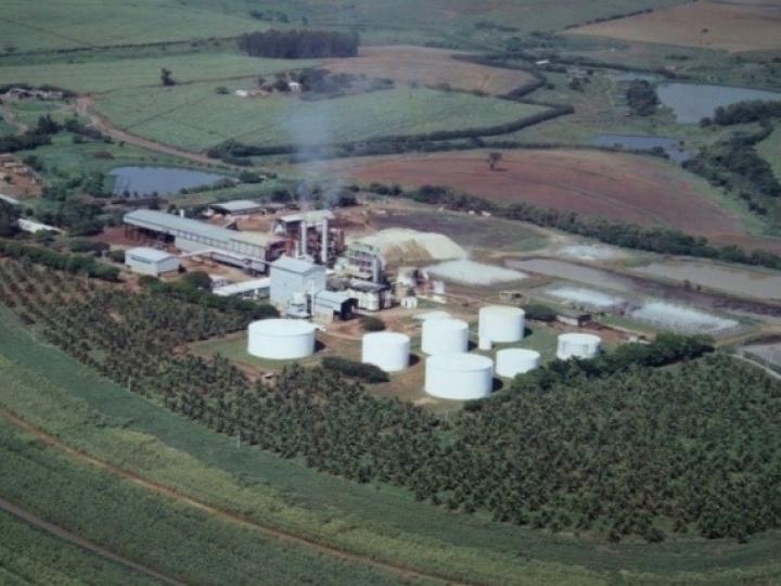 Usina BIOENERGIA DO BRASIL formará uma UPI (SPE) para venda em leilão