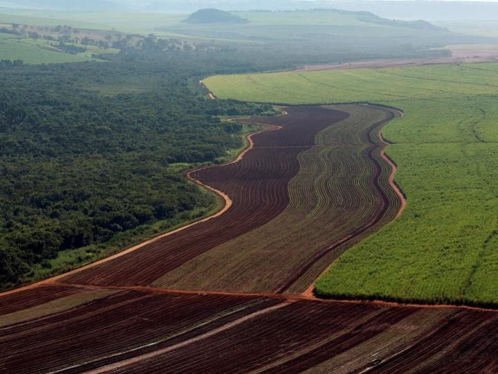 Usinas da Copersucar preservaram área ambiental do tamanho da cidade do Rio de Janeiro