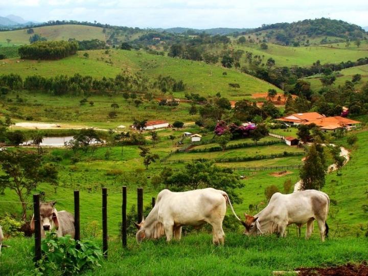 Alta das commodities estimulam investimento rural e  valoriza terras