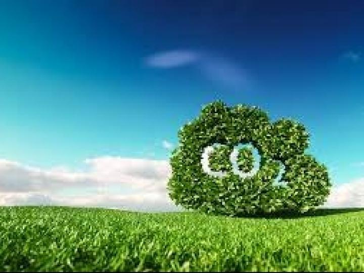 Nova fase de iniciativa Carbono Bayer reúne mais de 1.800 agricultores no Brasil