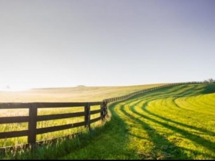 Os segredos de produtividade de 100 fazendas posicionadas entre as mais eficientes do Brasil