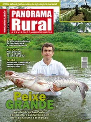 Edição 155 - Janeiro 2012