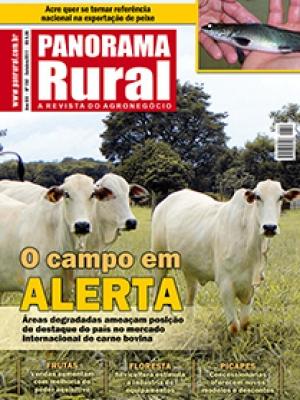 Edição 152 - Outubro 2011