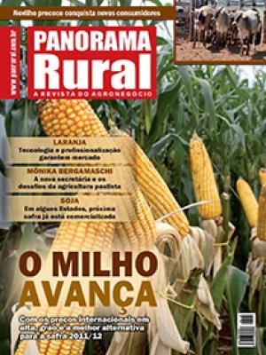 Edição 149 - Julho 2011