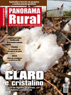 Edição 146 - Abril 2011