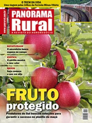 Edição 144 - Fevereiro 2011
