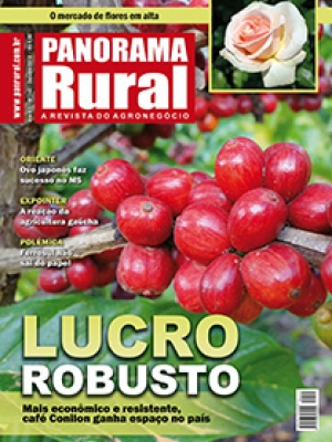 Edição 140 - Outubro 2010
