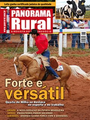 Edição 138 - Agosto 2010