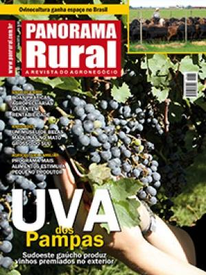 Edição 137 - Julho 2010