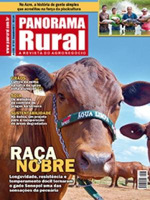 Edição 153 - Novembro 2011