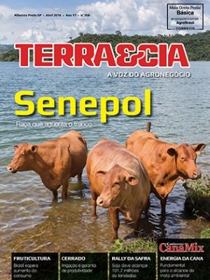 Edição 206 - Abril 2016