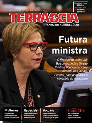 Edição 237 - Novembro 2018