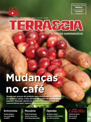 Edição 249 - Novembro 2019