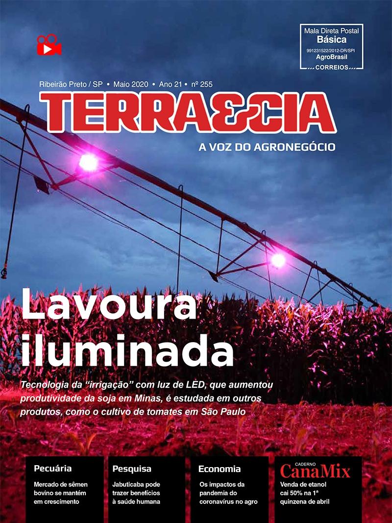 Edição 255 - Abril 2020